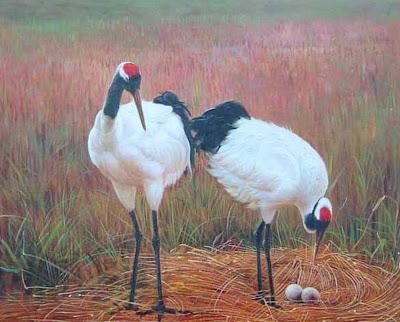 paisaje-con-avestruz
