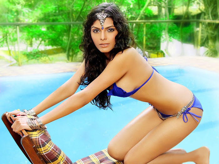 sherlyn chopra bikini actress pics