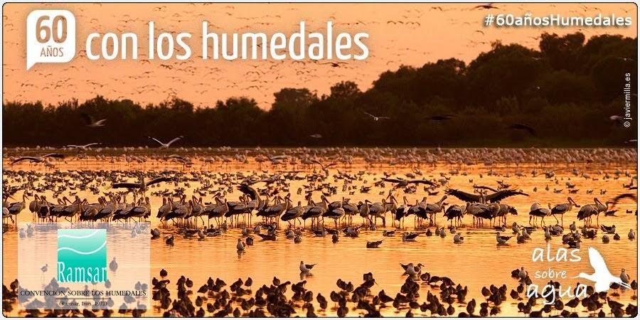 DIA DE LOS HUMEDALES