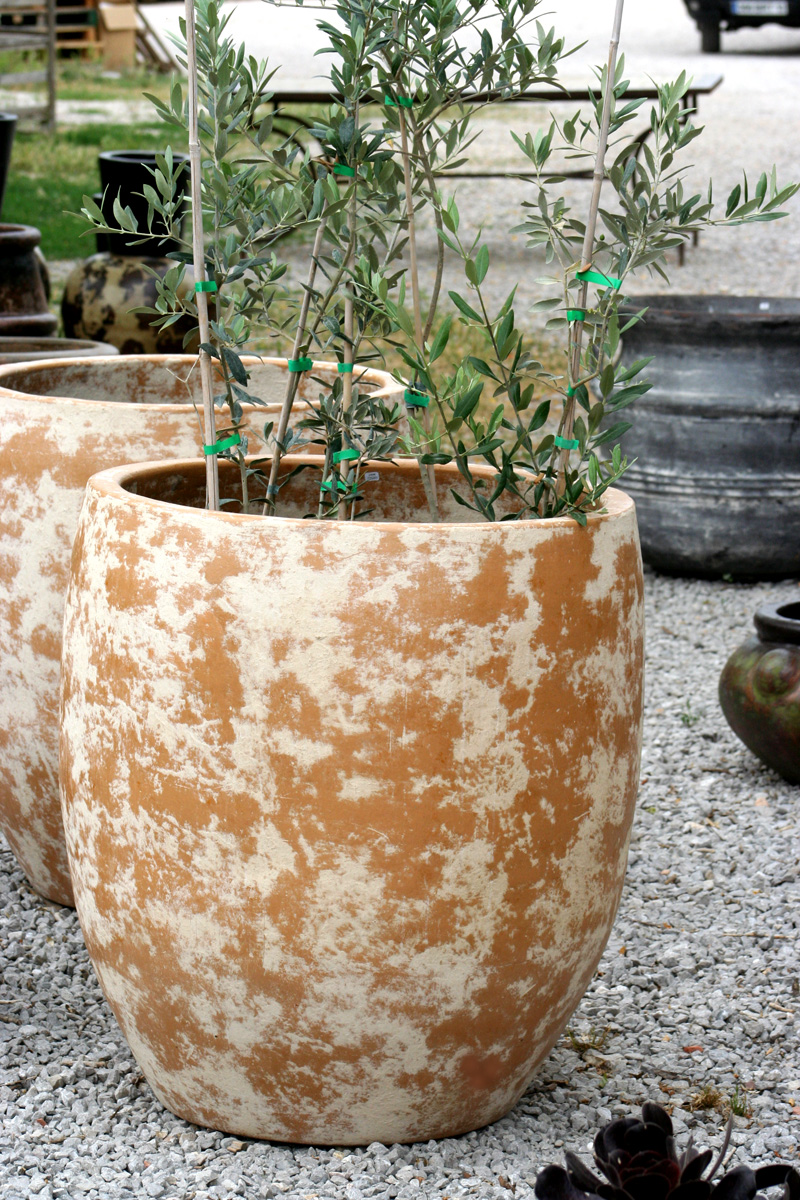 Amadera meuble et d coration le charme thique du for Grand pot exterieur jardin