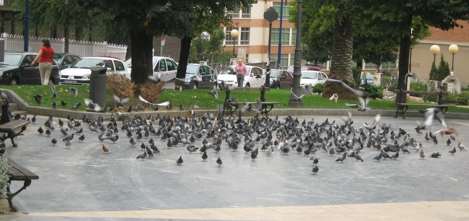 Barakaldo digital el ayuntamiento aplicar en el suelo - Parque suelo ...