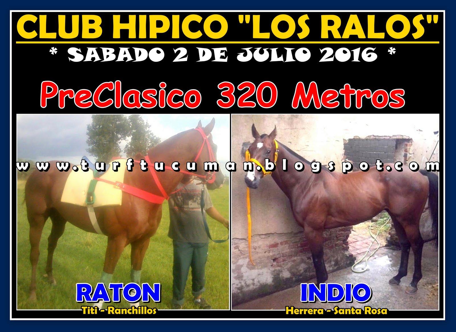 RATON VS INDIO