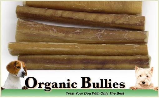 saving with brandi last day for bully sticks. Black Bedroom Furniture Sets. Home Design Ideas