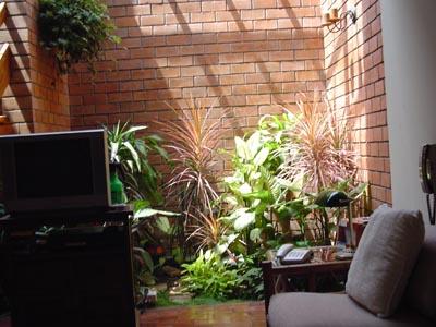 Jardín patio interior