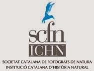 Membre de SCFN