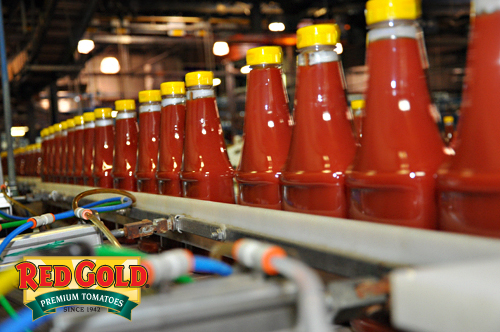 Red gold s ketchup production line in elwood indiana