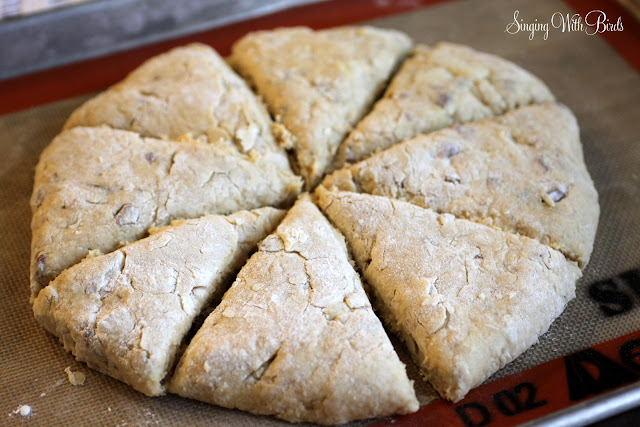 Maple Nut Pear Oatmeal Scones @singingwithbirds.com
