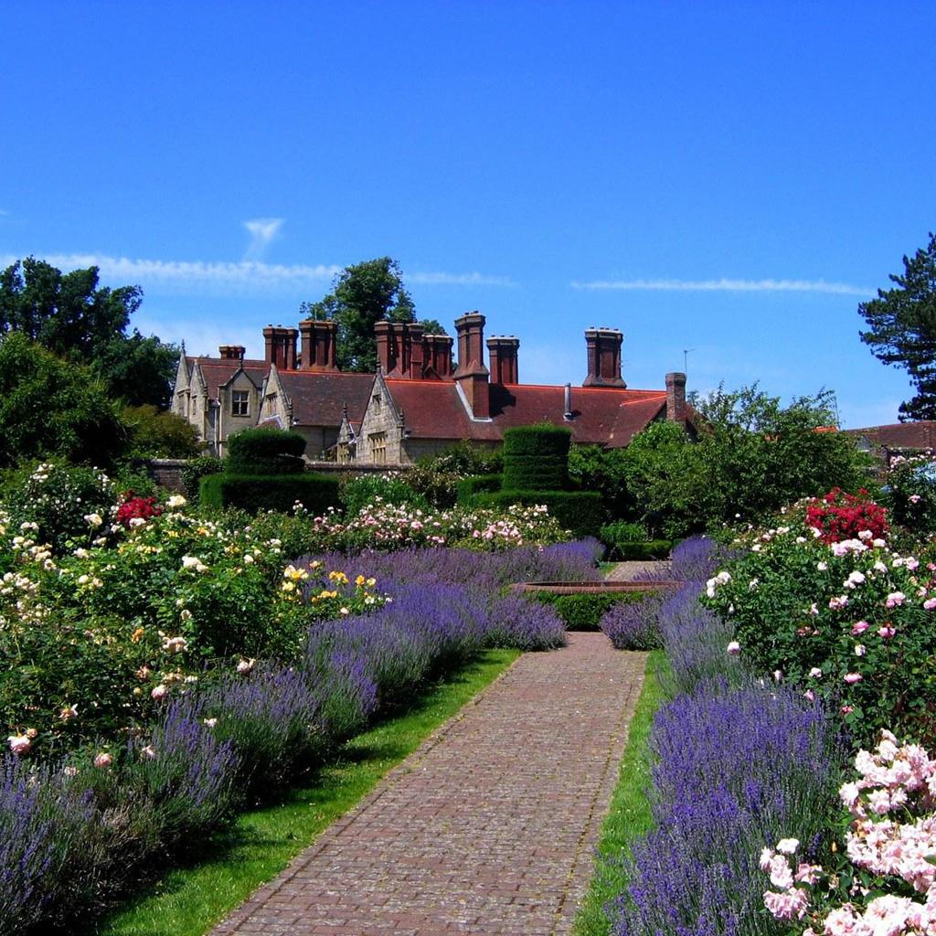 Dep sito santa mariah lavanda plante no seu jardim for Jardines hermosos para casas pequenas