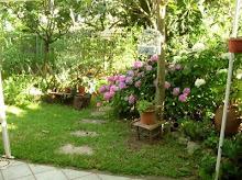 1° premio di Agraria...per il mio orto-giardino