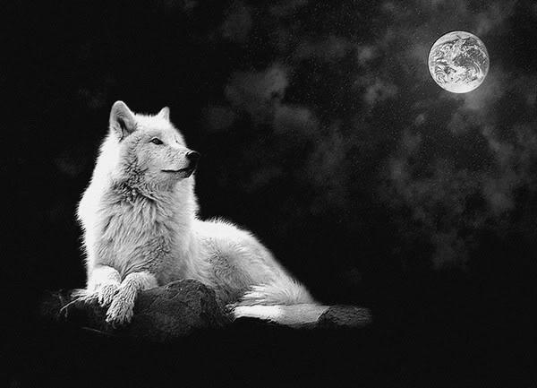 Celebrating The Seasons: January Full Moon-Full Wolf Moon ...