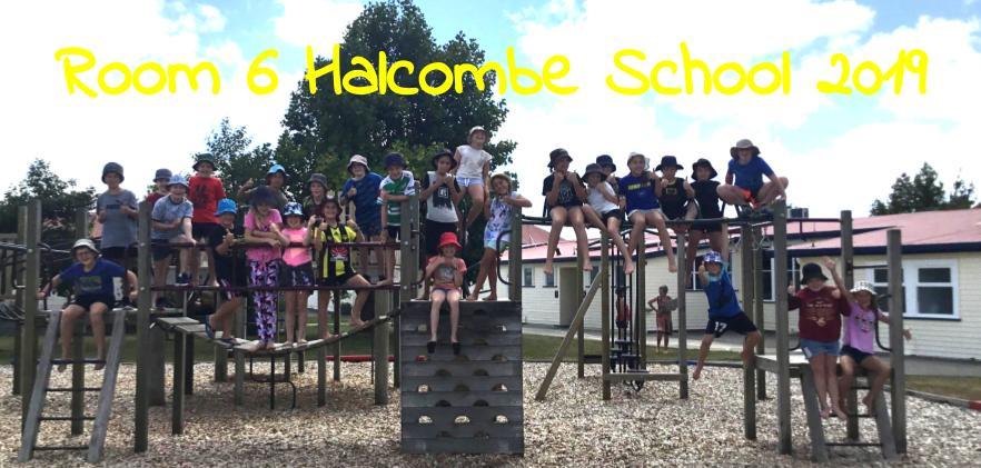 Room 6 Halcombe School 2019