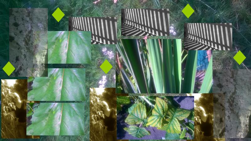 oliwia-blawat-garden-a