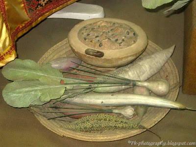 Vegetable Model