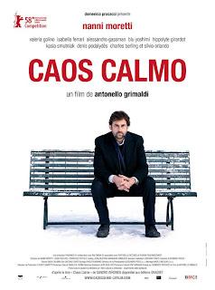 Baixar Filme   Caos Calmo   DVDRip XviD Legendado