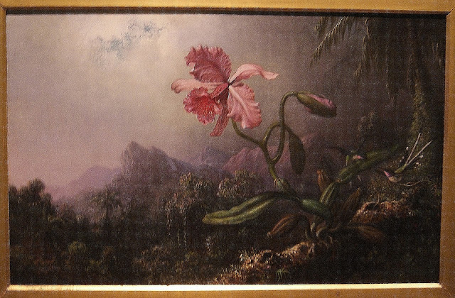 from Picturing the Americas Exhibit at Art Gallery of Ontario (AGO) in Toronto, ontario, canada, culture, exhibition, art, artmatters, painting, south, north, central, country, The Purple Scarf, MelaniePs, Two Hummingbirds with an Orchid, Martin Heade