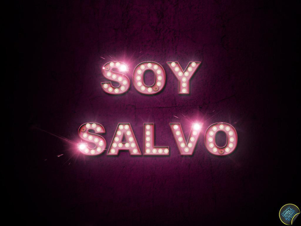 http://2.bp.blogspot.com/-UYTDl-dLkwA/Tb8D9Z286WI/AAAAAAAAA4I/e09b6X0niSs/s1600-d/SOY+SALVO.jpg