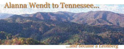 Alanna Wendt to Tennessee