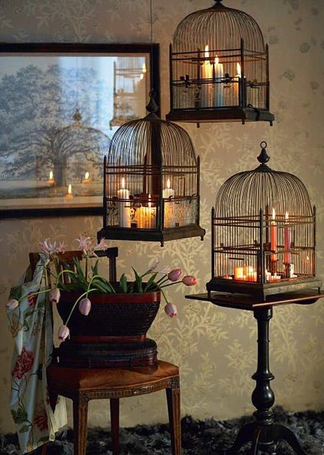 Dishfunctional Designs Decorating With Bird Nests Birdcages Home Decorators Catalog Best Ideas of Home Decor and Design [homedecoratorscatalog.us]