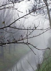 Invierno llorón de 2012