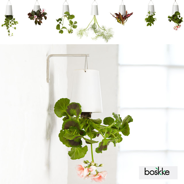 a new perspective on hanging plants introducing boskke sky planters if it 39 s hip it 39 s here. Black Bedroom Furniture Sets. Home Design Ideas