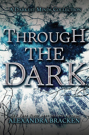 Through the Dark book cover