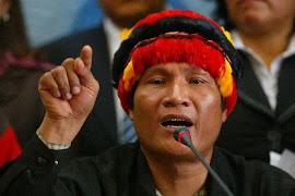 """""""El proximo gobierno debe respetar e incluir a pueblos originarios"""""""
