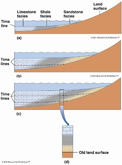 How To Identify Transgression And Regression In A Sedimentary Outcrop