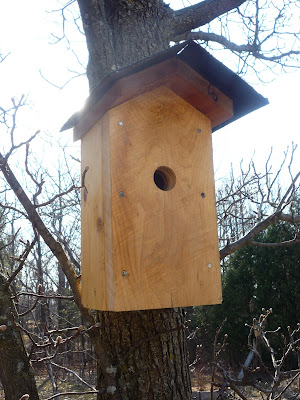 Free Garbage Can Storage Shed Plans Mourning Dove Nesting