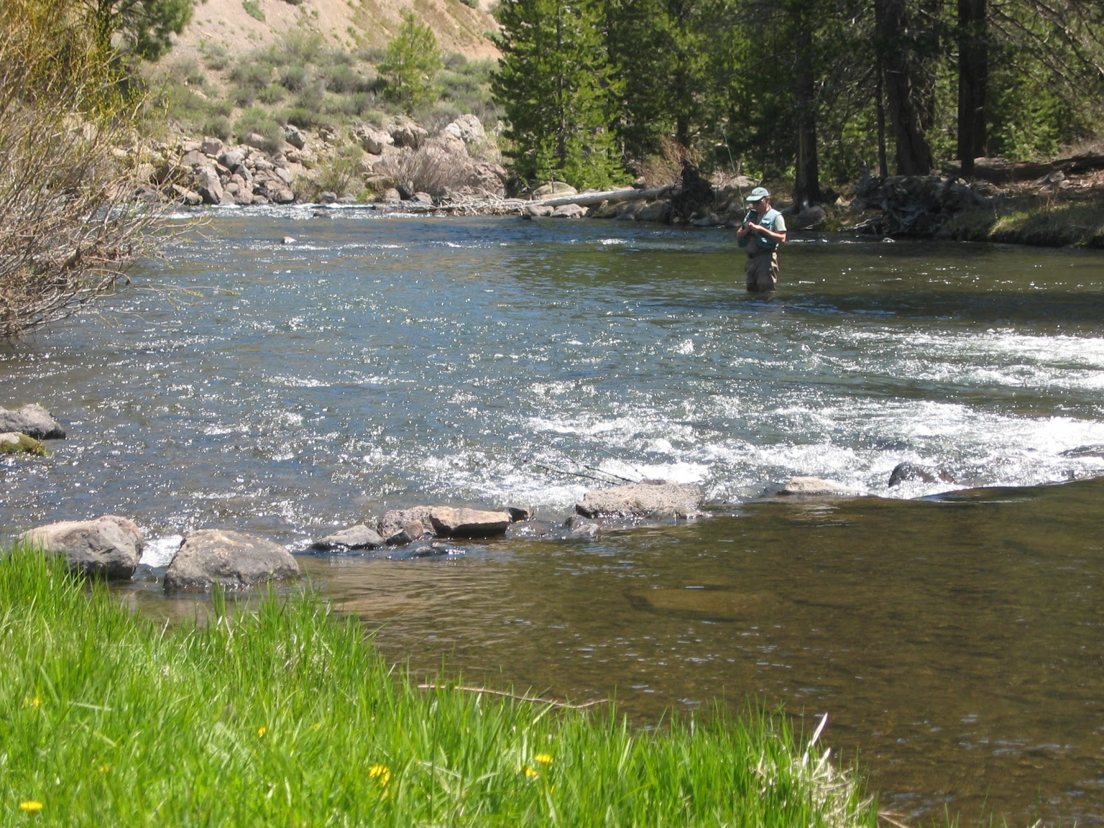 California fly fishing april 2012 for Trout fishing california