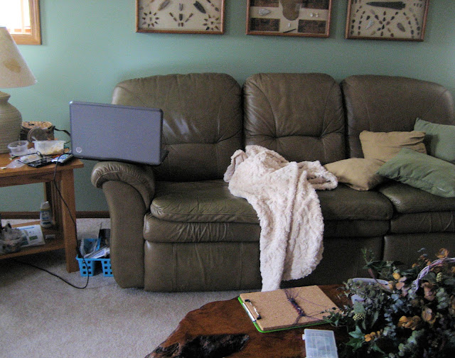 The messy couch