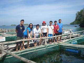 Seafdec island hopping