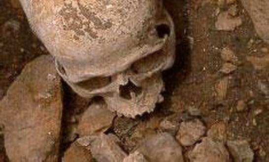 Penemuan Fosil 2 Juta Tahun di Afrika Buktikan Darwin Salah?