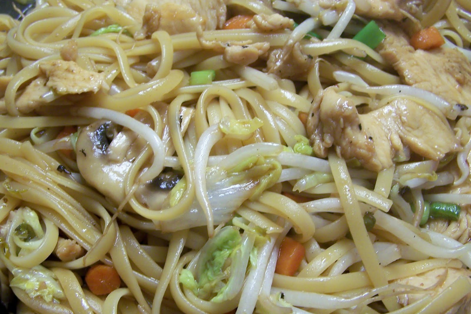 Diary of a Recipe Addict: Chicken Lo Mein
