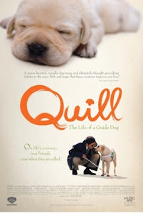 Chú Chó Quill - Quill: The Life of a Guide Dog