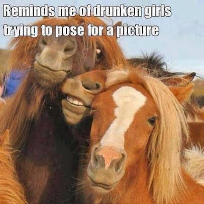 Drunk Horses or Drunk Girls?