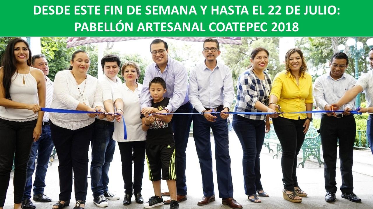 PABELLÓN ARTESANAL COATEPEC 2018