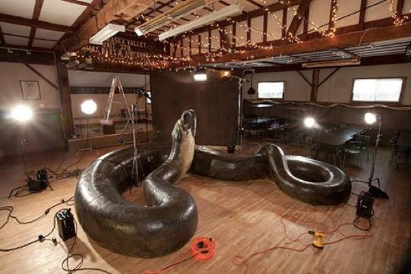 Ular Terbesar di Dunia Bukan Anaconda, Tetapi Titanoboa