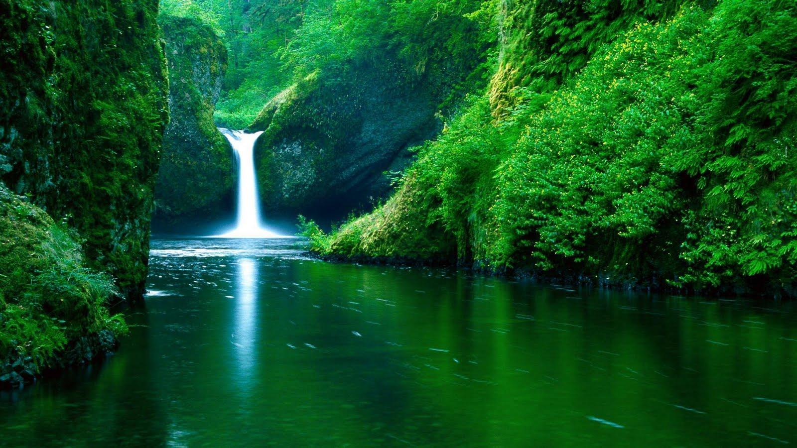 http://2.bp.blogspot.com/-UanyL8GHVZ4/TiJgnsn2kKI/AAAAAAAAAqo/VZYgckoYAw4/s1600/Amazing+Nature+Wallpapers+53.jpg