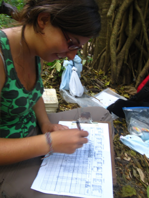bird mist netting research Nicaragua MOSI