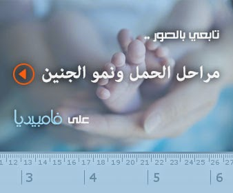 بالصور دليل مراحل الحمل ونمو الجنين