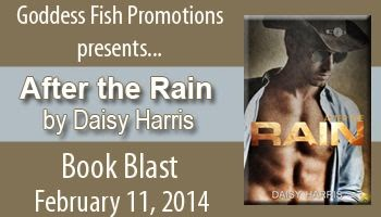 http://goddessfishpromotions.blogspot.com/2013/11/virtual-book-blast-after-rain-by-daisy.html