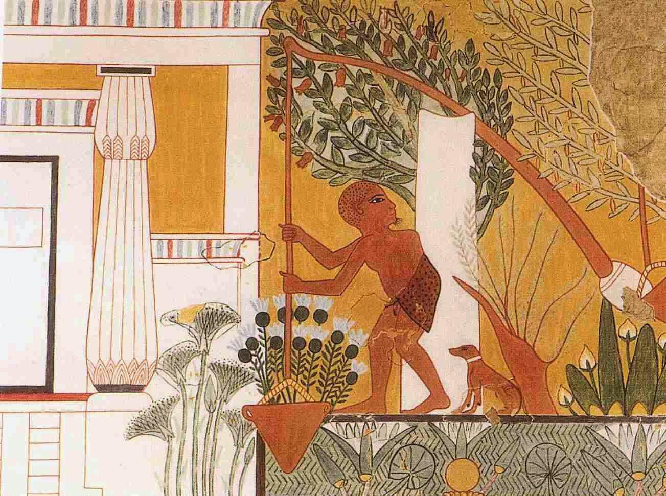 gardenhistory Egyptian Gardens Designs on french gardens designs, italian gardens designs, mediterranean courtyard gardens designs, fairies gardens designs, japanese gardens designs, english gardens designs, chinese gardens designs,