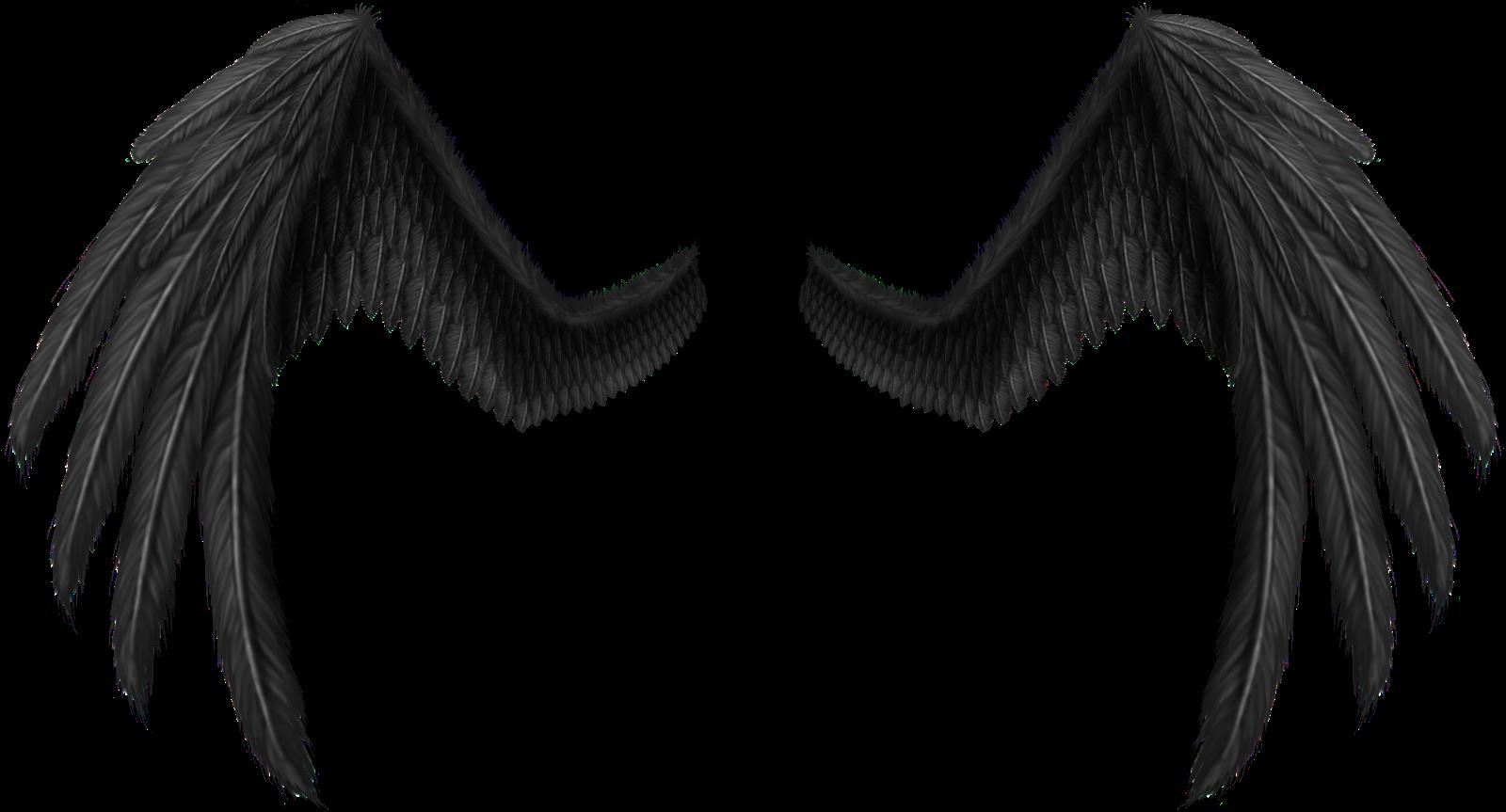 asas de anjo ficam - photo #15