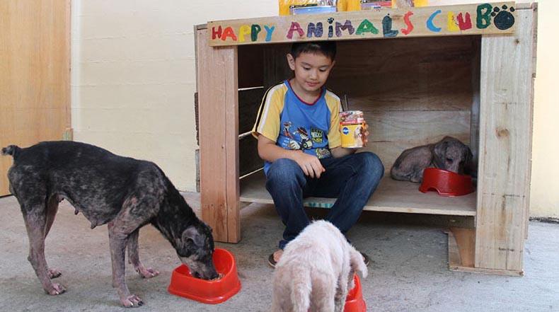 Niño de 9 años logra sueño de iniciar un refugio de no matanza de animales en su garaje
