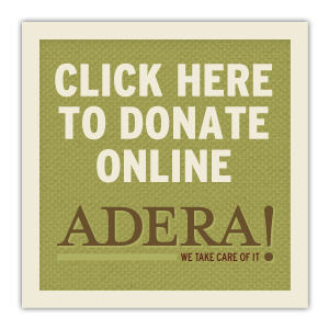 http://aderafoundation.org/programs/kebebe-tsehai-orphanage-project/