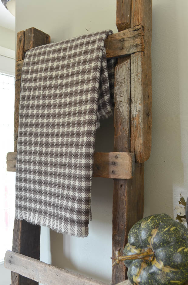 A rustic wood ladder is the perfect place to display a wool throw for fall.