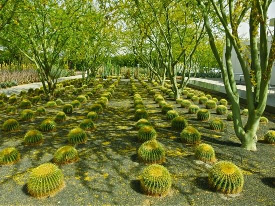 Sunnylands Center & Gardens: Annenberg Estate Hosts World Leaders ...