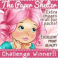 Winner at Kit and Clowder Create and Learn Challenge sponsored by The Paper Shelter