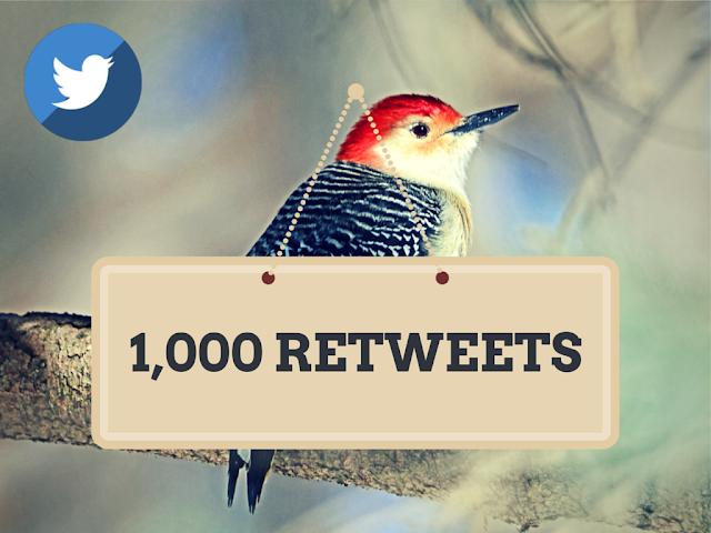 Buy 1000 Twitter Retweets