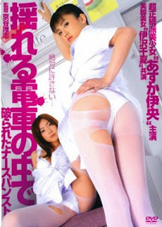 The Sensuous Nurse (2009)